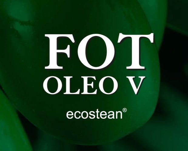 V-fot-oleo-banner-web